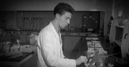 1950s: SARAN WRAP