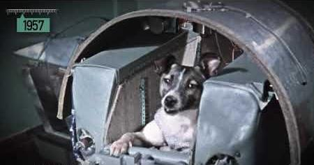 1950s: LAIKA SPACE DOG